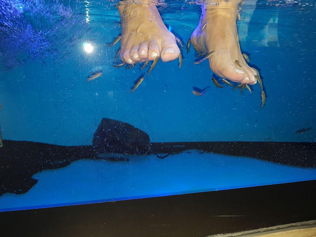 Erlebnis-Pediküre im Fish Spa